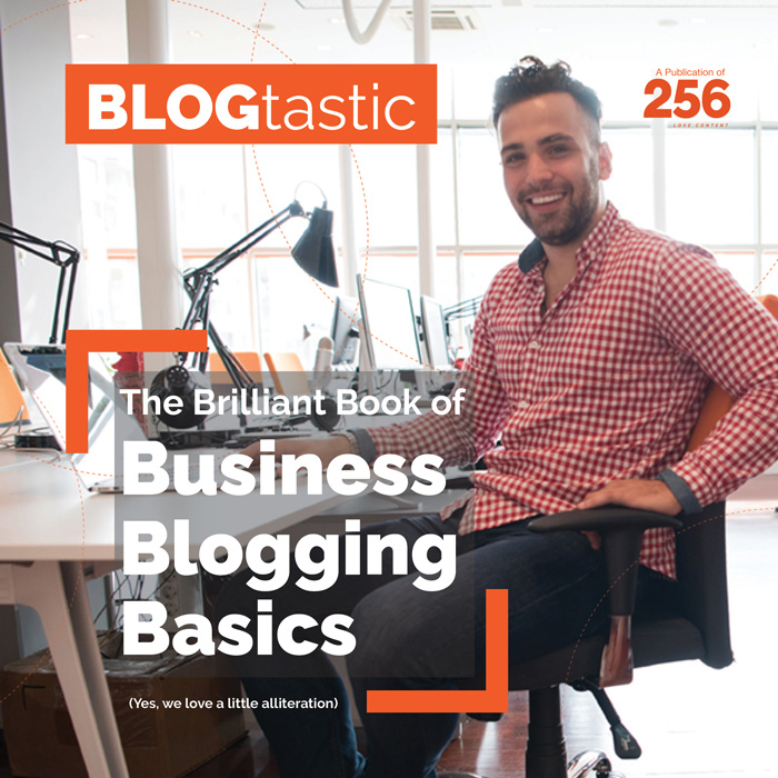 The Brilliant Book of Business Blogging Basics